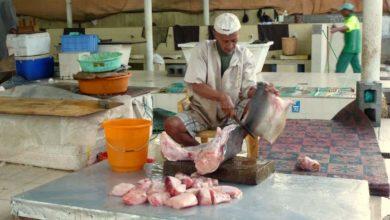 Bild von Oman: Erkundungen auf dem Fischmarkt von Mutrah