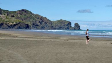 """Bild von Auswandern nach Neuseeland: """"Auch hier muss man hart arbeiten"""""""