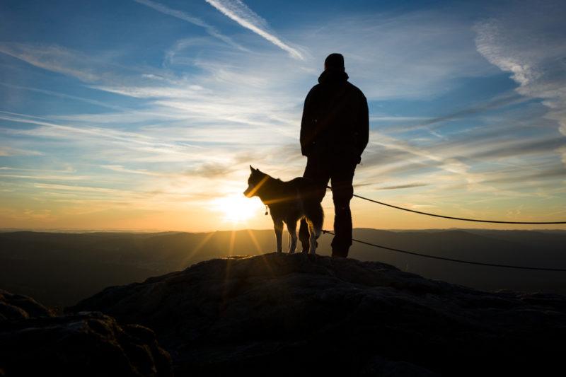 Hundert Tage lang wanderte Jens Franke mit seinem Hund Aiko durch Deutschland.