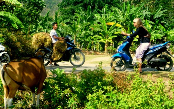 """Unterwegs mit dem Roller: Erlebe das indonesische """"Jalan-Jalan"""""""