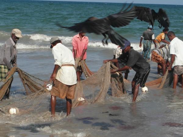 Nach dem Tsunami lag die Fischerei am Boden. Heute gehen die Fischer von Trincomalee wieder ihrem harten Handwerk nach.