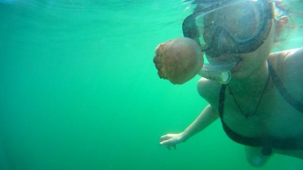 Abenteuerbad auf Kadidiri: Schwimmen im See voller Quallen.