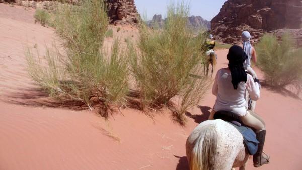 Der Ritt durchs Wadi Rum: die wohl authentischste Art, die Wüste zu erkunden.