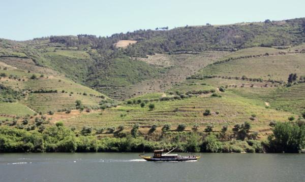 Malerische Gegend: Das Weinanbaugebiet am Duoro-Fluss.