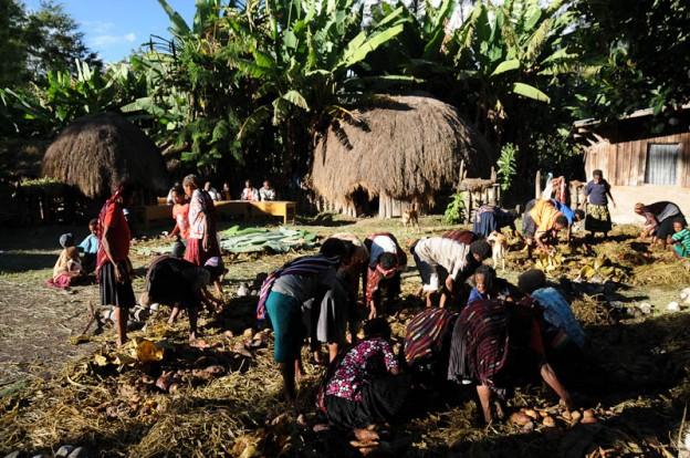 Bei Dorffesten werden Gemüse und Fleisch mit heißen Steinen in Erdlöchern gegart (Foto: Heiko Meyer)