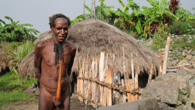 Bild von Indonesiens wilder Osten: Das Baliem-Tal in West-Papua