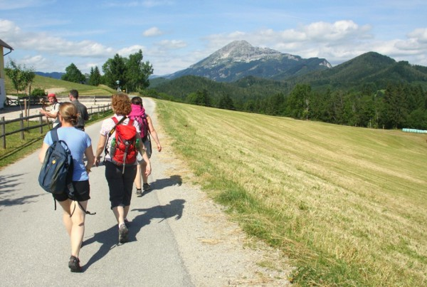 Typische Strecke auf der Via Sacra. Im Hintergrund der 1893 Meter hohe Ötscher.