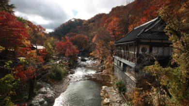Bild von Mein Japan: 8 Reiseblogger verraten ihre Highlights