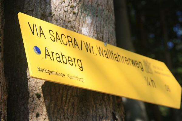 In mehreren Tagesetappen fühen die Via Sacra und der Wiener Wallfahrerweg von Wien nach Mariazell. Fotos: O. Zwahlen