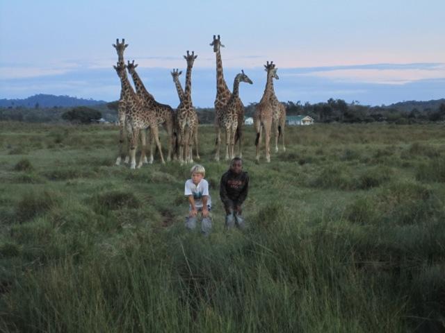 Safari vor der Haustür: Blick von der Krankenstation.