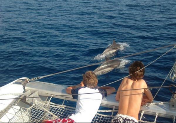 Die wilde Toskana: Bootsausflug mit den Walforschern von Viareggio.
