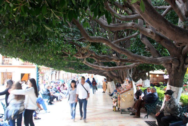 Wunderschöne Parks bereichern die Innenstadt von Guanajuato. Foto: O. Zwahlen