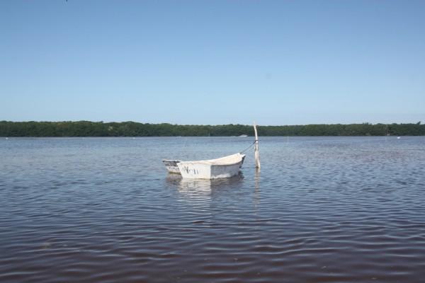 Ria Celestun: Breit, aber nicht sehr tief ist der Fluss.