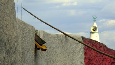 Bild von Harar: Wie mich Hyänen vor ein moralisches Problem stellten