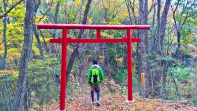 Photo of Wandern in Japan: 5 aussergewöhnliche Routen nahe Tokyo