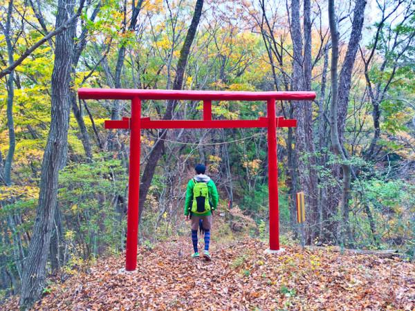 Wandern in Japan: Rund um Tokyo gibt es zahlreiche interessante Routen. Fotos: wanderweib.de
