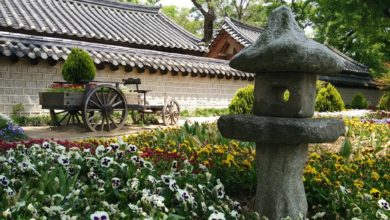 Photo of Mein Korea: Acht Kenner verraten ihre Highlights