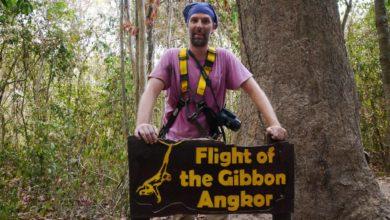 Photo of Flight of the Gibbon: Im Sauseschritt durch Angkors Wipfel