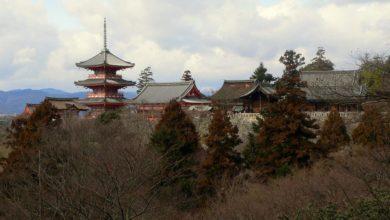 Bild von Vergleich Japan, Korea und Taiwan: Das grosse Länder-Triell