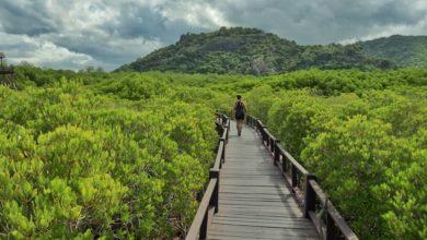 Photo of Hua Hin: 12 Ausflugsideen für Thailands ersten Badeort