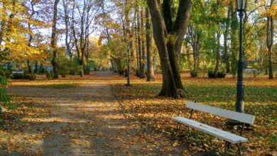 Photo of Saaremaa: Wieso Estlands grösste Insel ein perfektes (Herbst)reiseziel ist