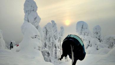 Bild von Wohin im Winter? 12 Reiseideen für den Urlaub im Winter
