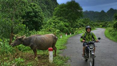"""Photo of Vietnam mit dem Motorrad: """"Der Verkehr ist nicht so schlimm"""""""