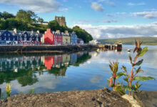 Photo of Isle of Mull: Das erwartet dich auf Schottlands wilder Insel